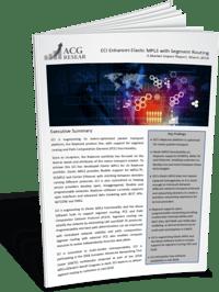 ACG-Elastic-MPLS.png