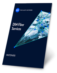 WP-DIM-Fiber-Services.png