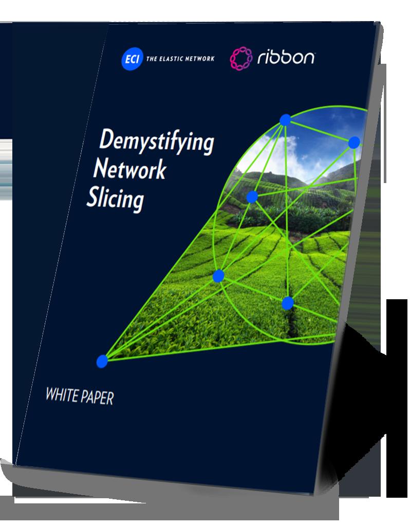 WP-Demystifying-Network-Slicing_sm