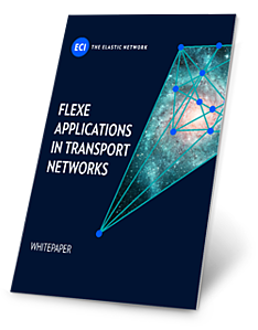 WP-FlexE-Applications-in-Transport-Networks