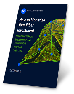WP-How-to-Monetize-Your-Fiber-Investment