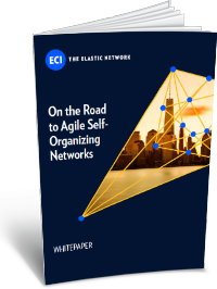 WP-On-the-Road-to-Agile-Self-Organizing-Networks-2