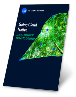 Whitepaper-Going-Cloud-Native.png