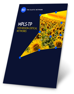 mpls-tp-for-mission-critical-networks-wp.png