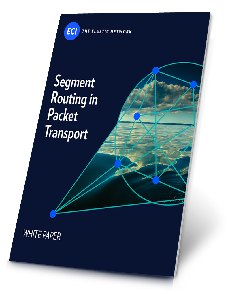 WP_Segment-Routing-in-Packet-Transport
